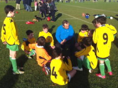 Cabo U-11D2s survive yellow fever